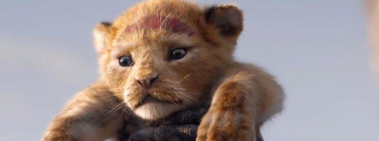 Le film d'action en direct du roi des lions Disney Promises n'est pas un remake tout-en-un