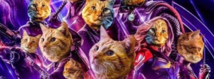 Goose the Cat à revenir dans Avengers: Endgame?