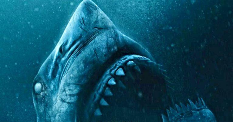 <pre>Une remorque sans cage libère des requins terrifiants de l'enfer