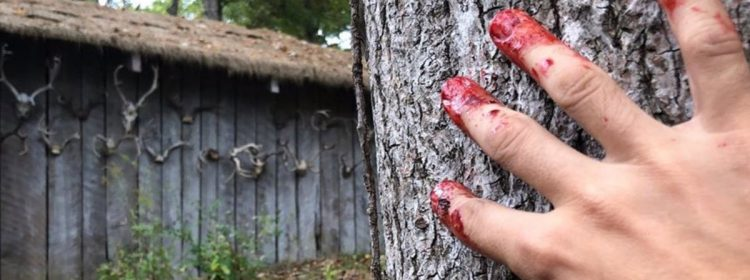 Mauvais virage du redémarrage, le directeur partage l'image de l'ensemble final gêné par le sang